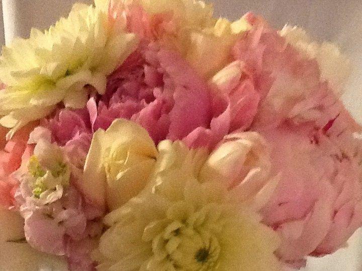 Tmx 1426357287157 Ipad Pictures 764 Woodland, California wedding florist