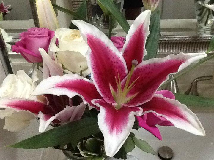 Tmx 1426357480393 Ipad Pictures 667 Woodland, California wedding florist