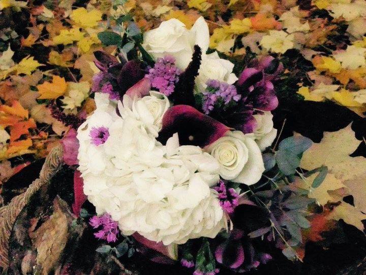 Tmx 1478292211861 Img2246 Cherry Creek, NY wedding florist