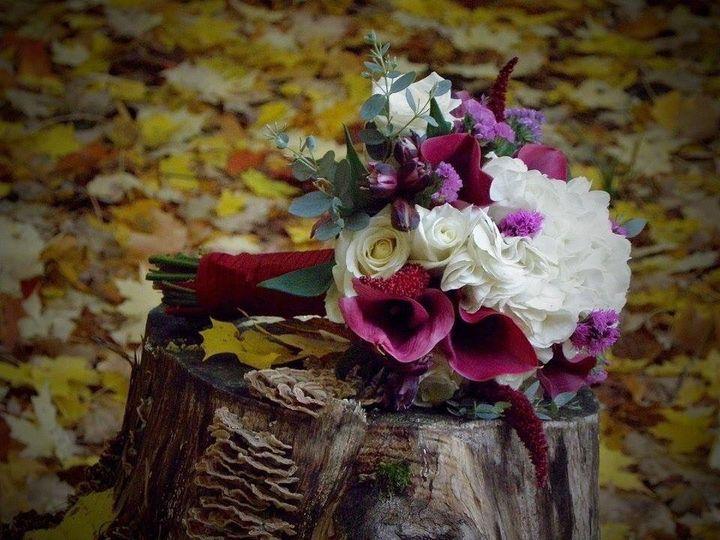 Tmx 1478292222170 Img2247 Cherry Creek, NY wedding florist