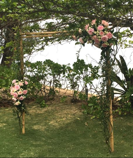 Anini Beach House. Curly Willow arch