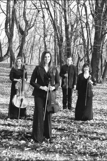 Quartet in the woods
