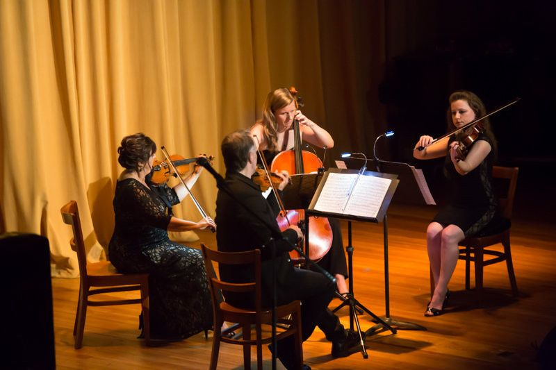 String Quartet of Northern Virginia