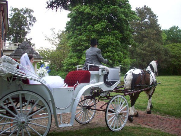 The bride with horse carriage