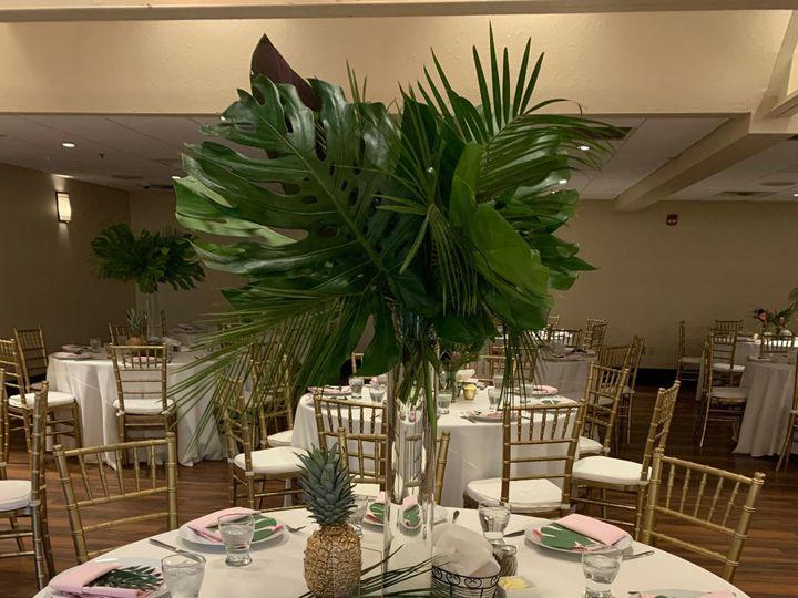 Tmx Img 2576 51 708324 158398203695558 Saint Petersburg, FL wedding planner