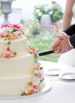 Tmx Cakecutting 51 183424 159734565241774 Miami, FL wedding venue