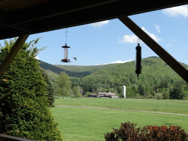 VIEW FROM CABIN TOWARDS BARN AREA.