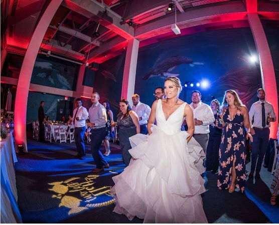 Tmx Dragonphotostudio4 1 51 121524 1571339861 Virginia Beach, VA wedding venue