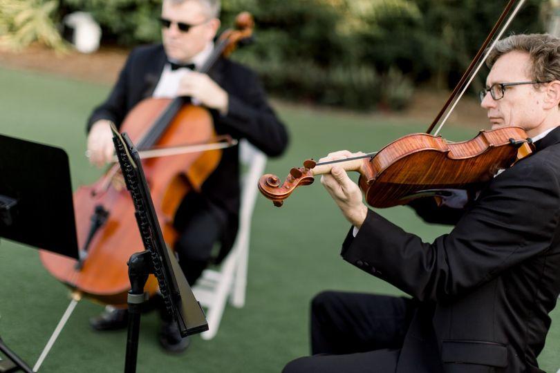Vanderbilt strings