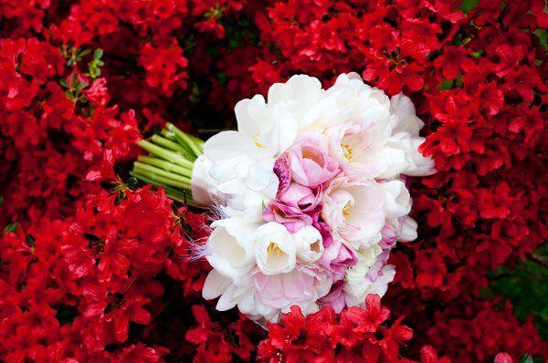 Tmx 1323800727248 OpenHouse24 Blue Bell, Pennsylvania wedding florist