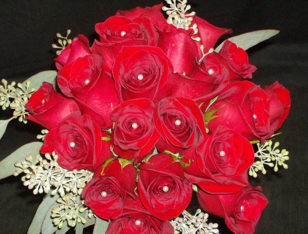 Red roses classic look.