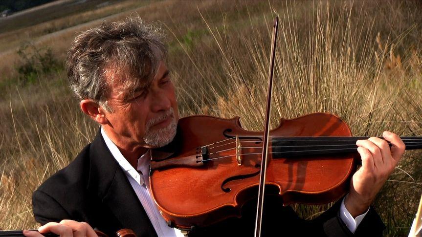 houser violin de