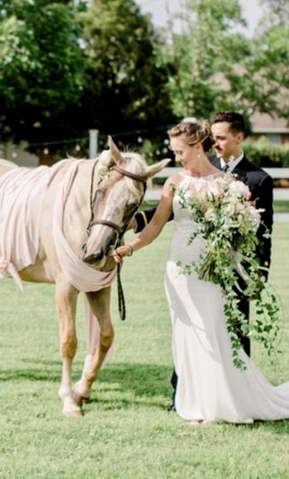 Horse in ceremony. Photo by Teresa Green