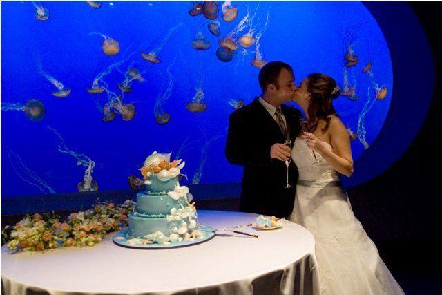 Tmx 1344358666456 Justcake2 Capitola, CA wedding cake