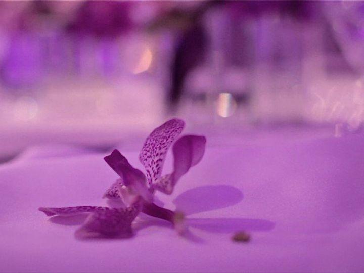 Tmx 1360017295561 AustinWeddingVideographyRachaelChris011024x482 Denver wedding videography