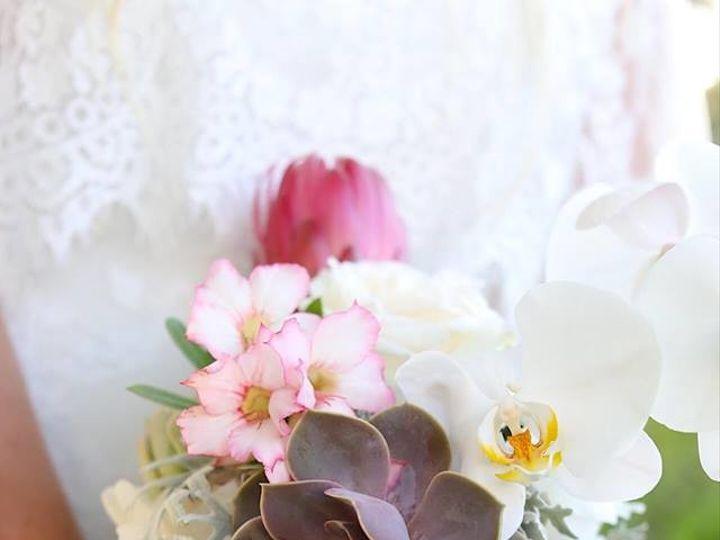 Tmx 1502982225417 Heidi Harman 1 Sarasota wedding catering