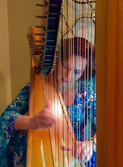 Harp music for a cocktail reception.