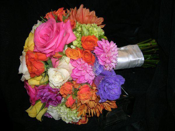 Tmx 1302900732212 DSCN2907 Charlotte wedding florist