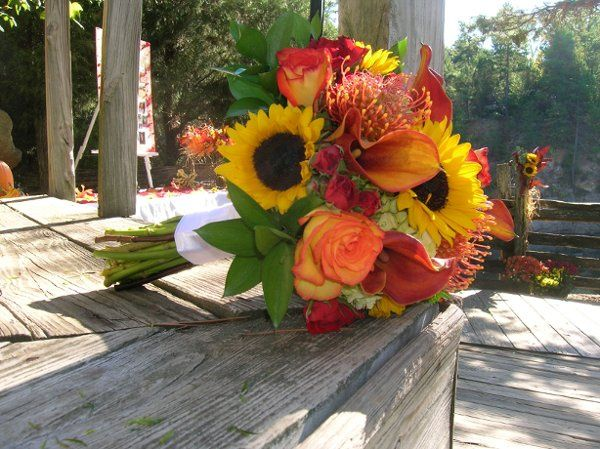 Tmx 1302901728853 DSCN3301 Charlotte wedding florist