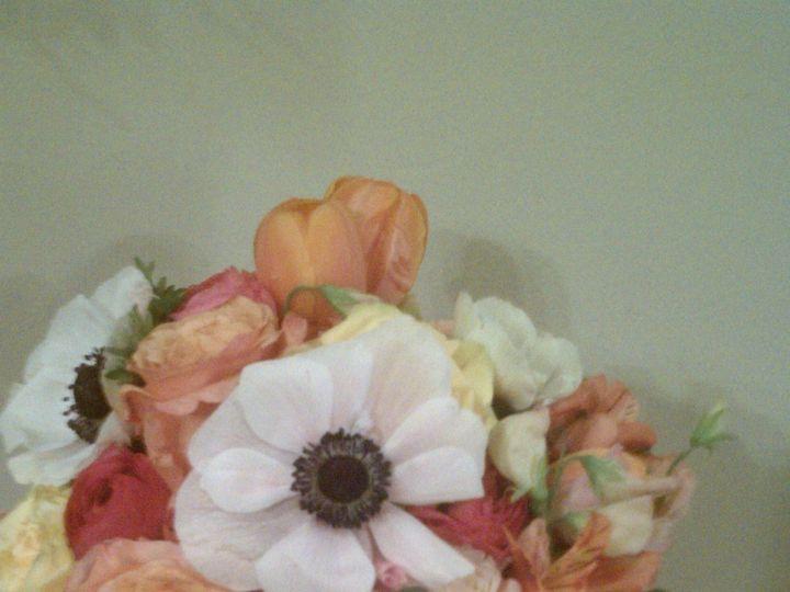 Tmx 1371996433610 Imag1753 Charlotte wedding florist