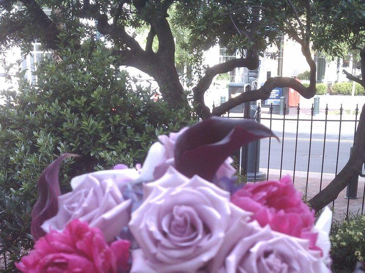 Tmx 1371996529755 Imag1782 Charlotte wedding florist