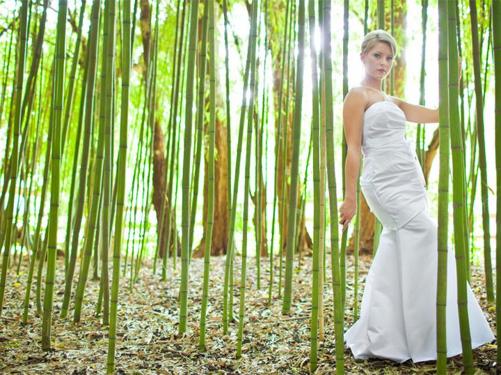 Tmx 1376693539895 Mckelvey22222 Griffin, GA wedding photography