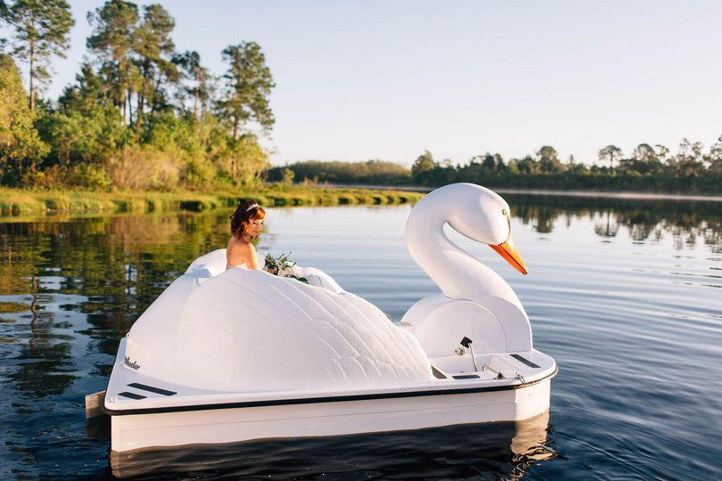 Swan Boats at Lake Austin