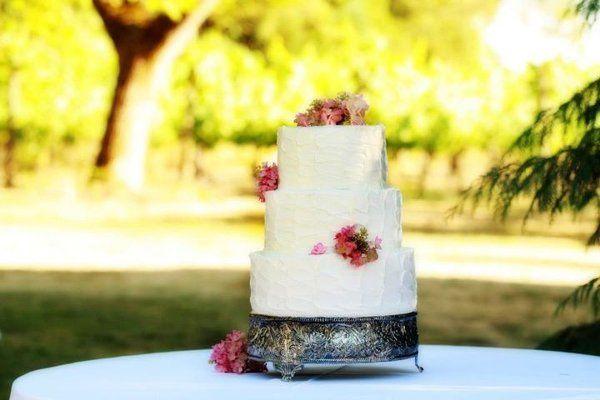 Tmx 1318536559489 31023610150777493610570147350855569204163917859676n Newberg wedding cake