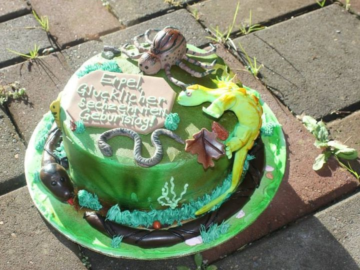 Tmx 1399309482743 Reptilia Newberg wedding cake