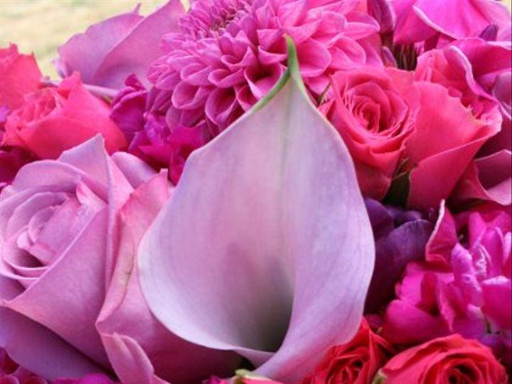 Tmx 1288805182072 Magentapost Everett, WA wedding florist