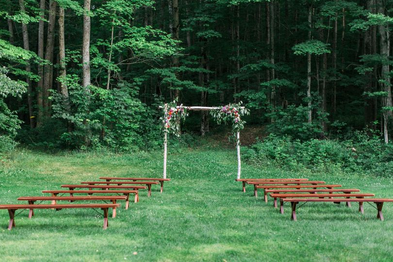 Birch arbor and intimate ceremony in the Meadow