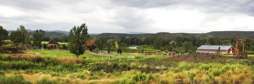 Wild Bunch River Ranch, LLC lawn