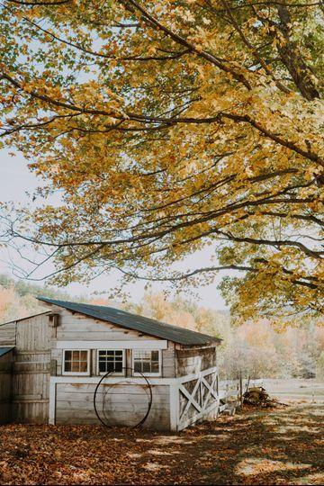 Pasture in the Autumn