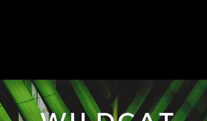Wildcat Adventures