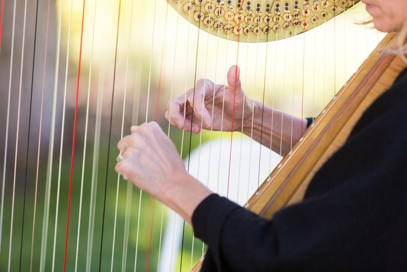 Flute and Harp Wedding Duo