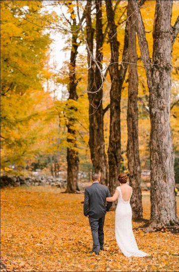 Stroll through the Maples