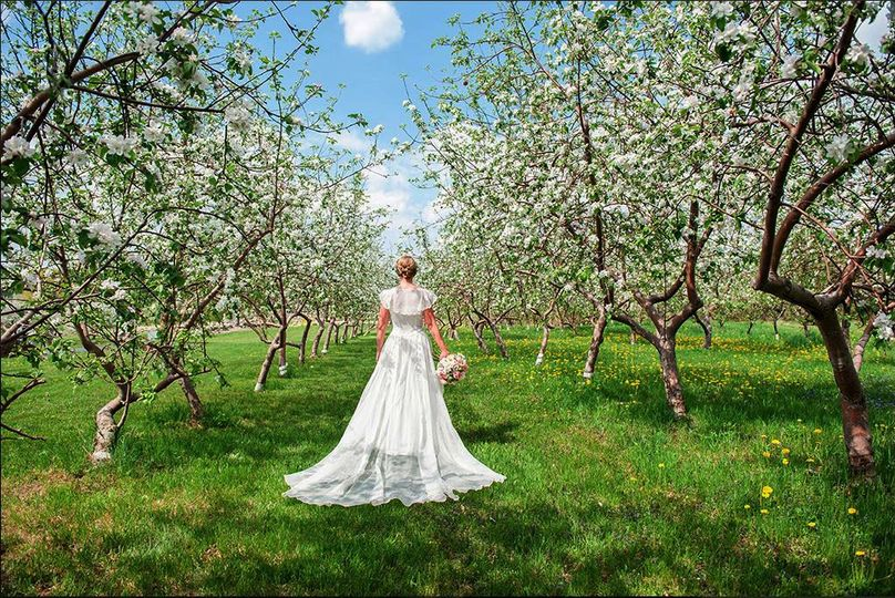 Bride Between the Blossoms