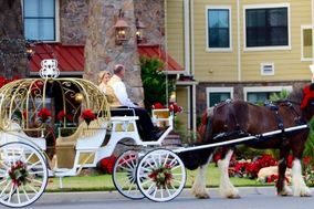 Equine Villa Carriage Company