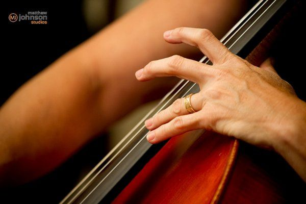 Cellist performing as part of string quartet for the wedding and reception, at The Palm Door in...