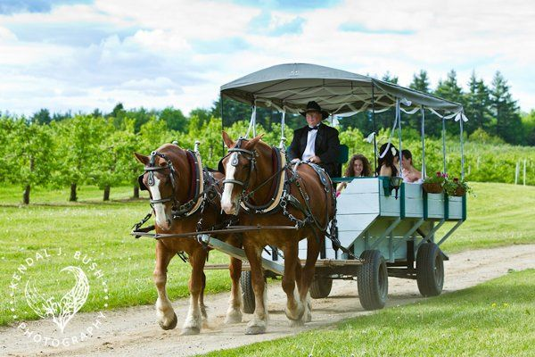 Tmx 1327592901973 EmmainWagonwithStonewallhorses Walpole wedding venue