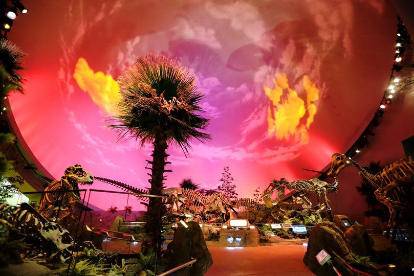 Dinosphere Gallery