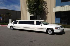 Elegant Silicon Valley Limo