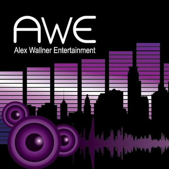 Alex Wallner Entertainment Dj Osseo Mn Weddingwire