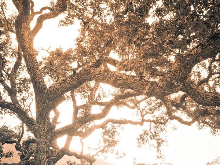 Tmx 0772 Azellio 9439 2 51 373734 1569457667 Monterey, CA wedding photography