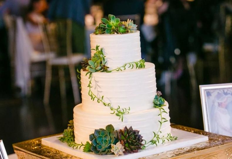 Horizontal Texture buttercream with greenery & succulents at Thursday Club.