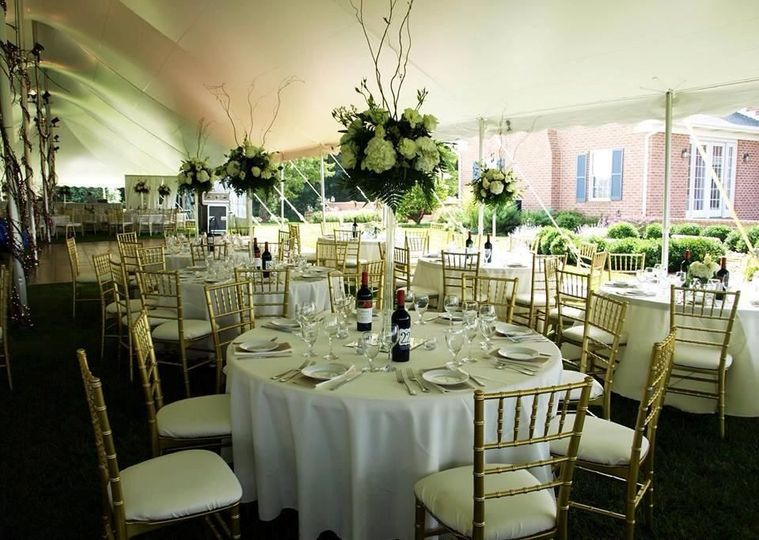 With an extensive knowledge of tented and backyard weddings we are the perfect partner for DIY and...