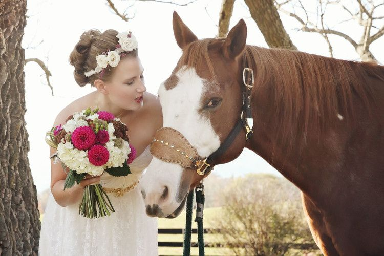 horsefinal