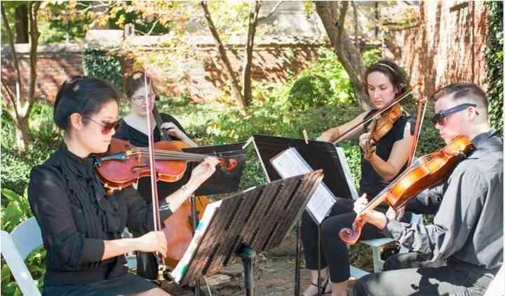 Volare String Quartet