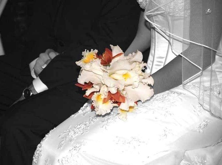 Tmx 1490736862043 Dscf6175 Copy Hialeah, FL wedding florist