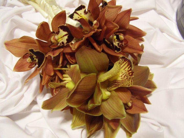 Tmx 1490737041789 Picture 006 Hialeah, FL wedding florist
